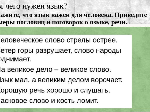 Для чего нужен язык? Докажите, что язык важен для человека. Приведите пример...