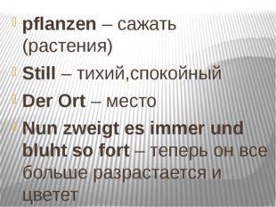 pflanzen – сажать (растения) Still – тихий,спокойный Der Ort – место Nun zwei