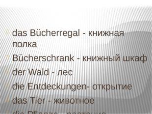das Bücherregal - книжная полка Bücherschrank - книжный шкаф der Wald - лес