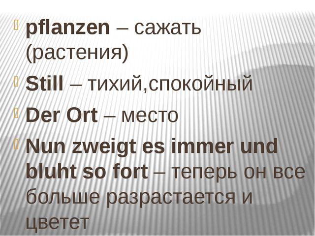 pflanzen – сажать (растения) Still – тихий,спокойный Der Ort – место Nun zwei...
