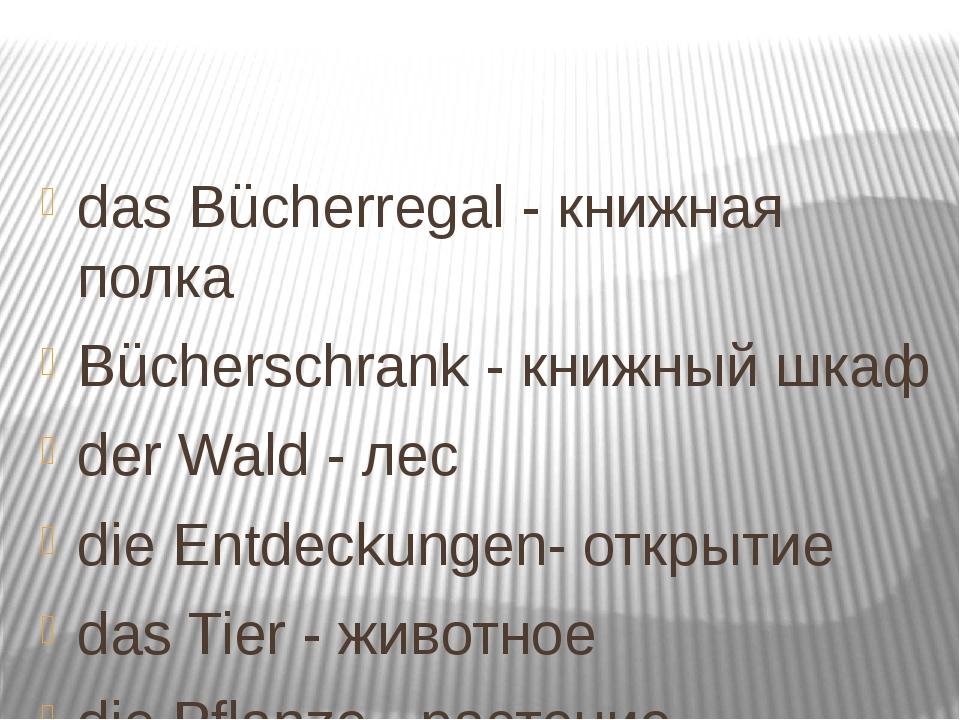 das Bücherregal - книжная полка Bücherschrank - книжный шкаф der Wald - лес...