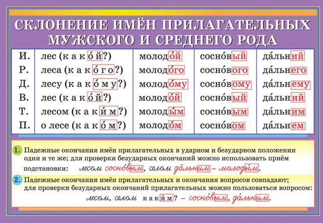 hello_html_788dc57c.jpg