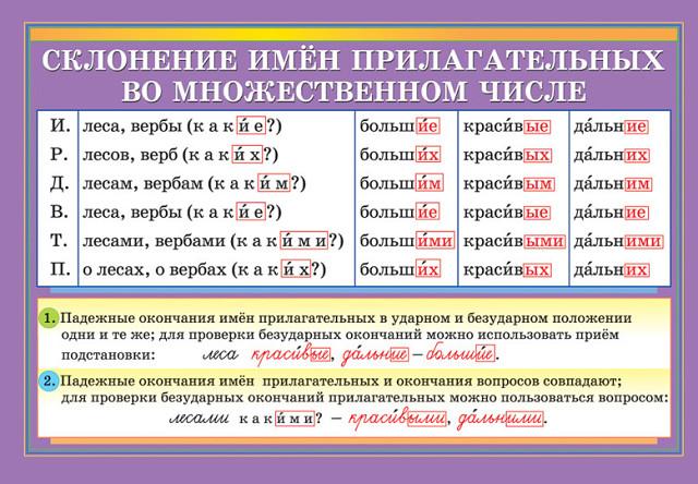 hello_html_m1b0fc100.jpg