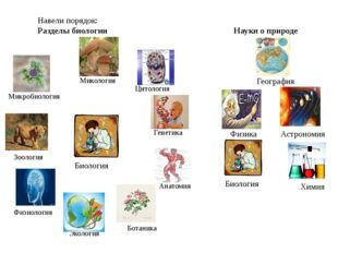 Экология Биология Ботаника Зоология Микология Микробиология Цитология Анатоми