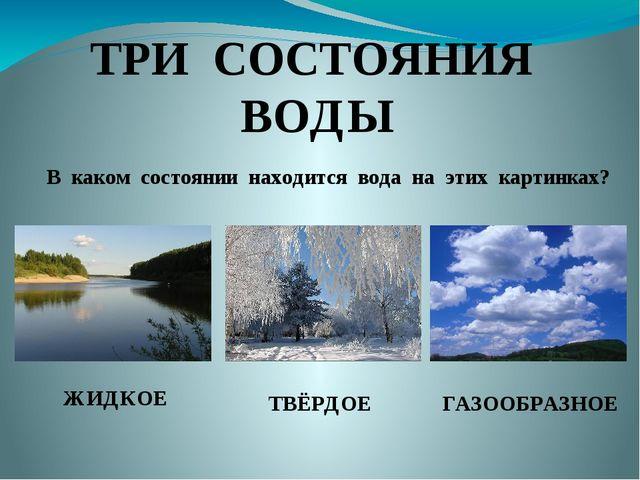 ТРИ СОСТОЯНИЯ ВОДЫ В каком состоянии находится вода на этих картинках? ЖИДКОЕ...