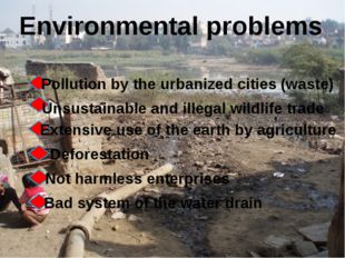 Environmental problems Pollution by the urbanized cities (waste) Unsustainabl