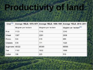 Productivity of land
