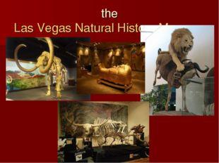 theLas Vegas Natural History Museum