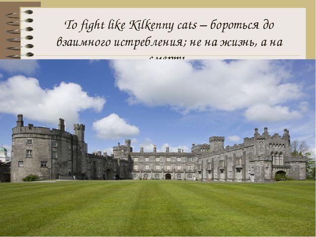 To fight like Kilkenny cats – бороться до взаимного истребления; не на жизнь,...