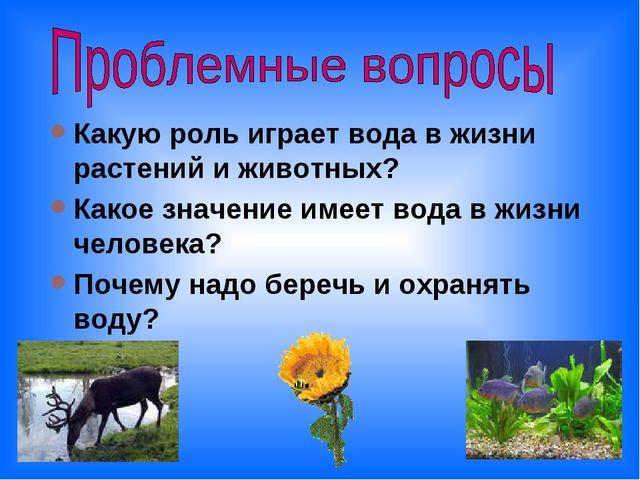 Какую роль играет вода в жизни растений и животных? Какое значение имеет вода...