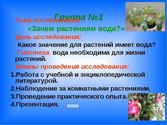 Группа №1 Тема исследования: «Зачем растениям вода?» Цель исследования: Како...