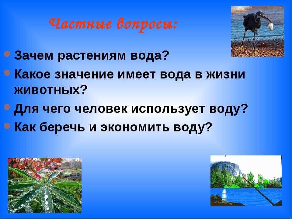 Частные вопросы: Зачем растениям вода? Какое значение имеет вода в жизни жив...