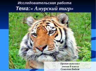 Исследовательская работа Тема:« Амурский тигр» Проект выполнил ученик 6 класс