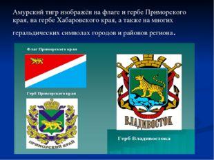 Амурский тигр изображён на флаге и гербе Приморского края, на гербе Хабаровск