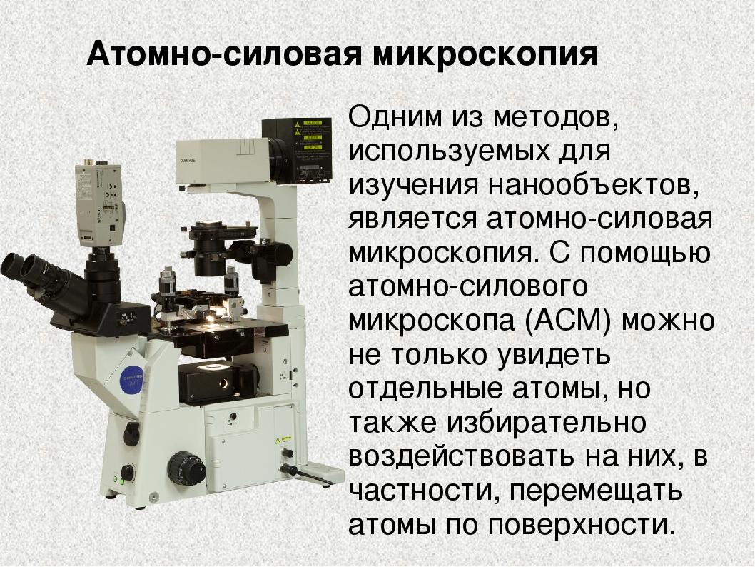 Одним из методов, используемых для изучения нанообъектов, является атомно-сил...