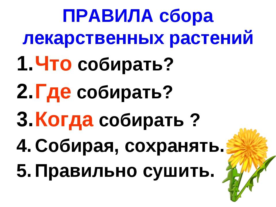 ПРАВИЛА сбора лекарственных растений Что собирать? Где собирать? Когда собира...