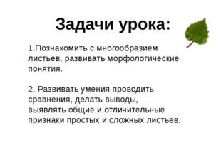 Задачи урока: 1.Познакомить с многообразием листьев, развивать морфологически