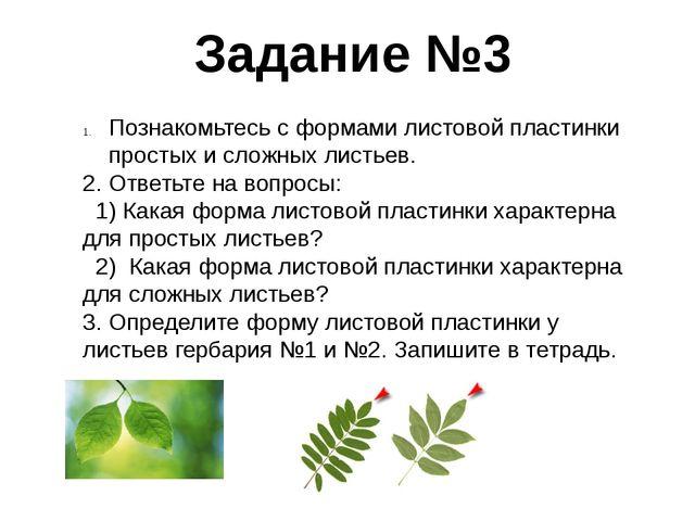 Задание №3 Познакомьтесь с формами листовой пластинки простых и сложных листь...