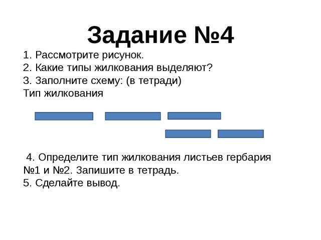 Задание №4 1. Рассмотрите рисунок. 2. Какие типы жилкования выделяют? 3. Запо...