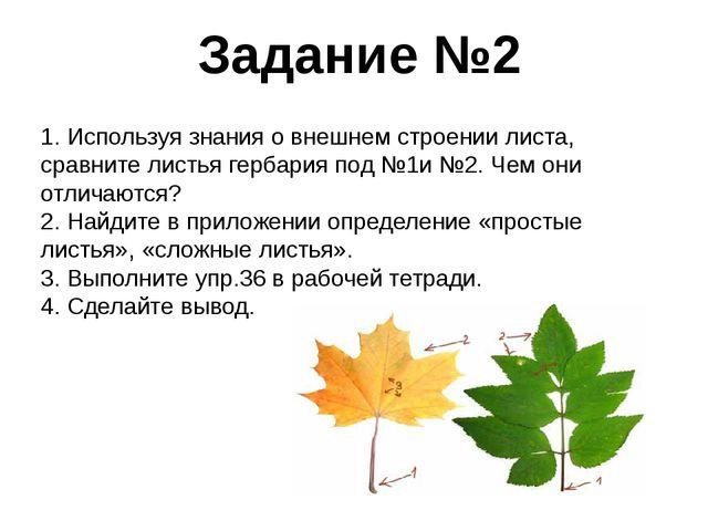 Задание №2 1. Используя знания о внешнем строении листа, сравните листья герб...
