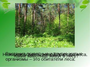 Назовите объекты живой природы леса. Растения, животные и другие живые органи