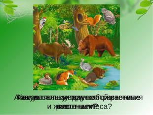 Как связаны между собой растения и животные леса? Какую пользу приносят расте