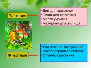 Растения Животные Дом для животных Пища для животных Место укрытия Материал д
