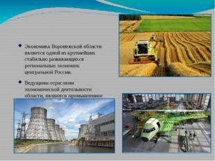 Экономика Воронежской области является одной из крупнейших стабильно развива