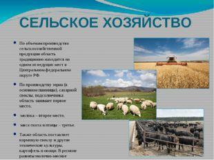 СЕЛЬСКОЕ ХОЗЯЙСТВО По объемам производства сельскохозяйственной продукции обл