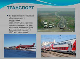 ТРАНСПОРТ По территории Воронежской области проходят: федеральные автомагистр
