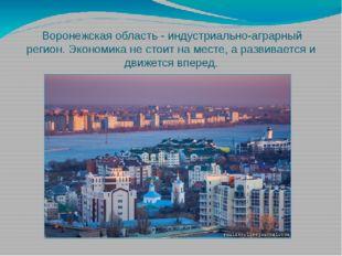 Воронежская область - индустриально-аграрный регион. Экономика не стоит на м