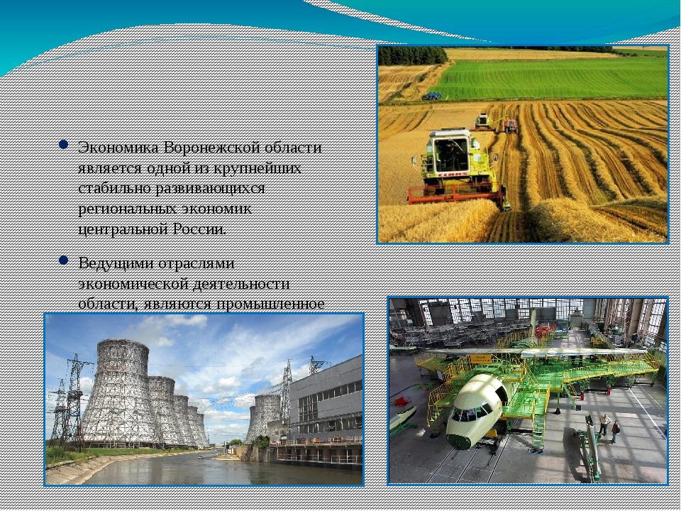 Экономика Воронежской области является одной из крупнейших стабильно развива...