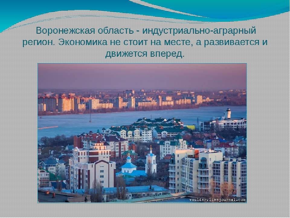 Воронежская область - индустриально-аграрный регион. Экономика не стоит на м...