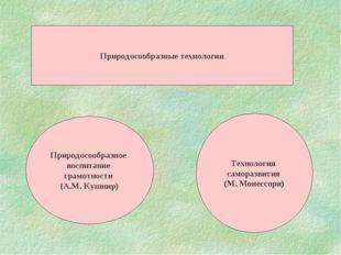 Природосообразные технологии Природосообразное воспитание грамотности (А.М. К