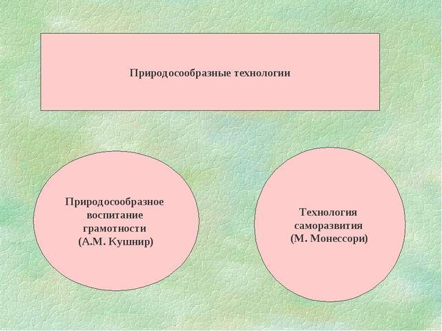 Природосообразные технологии Природосообразное воспитание грамотности (А.М. К...