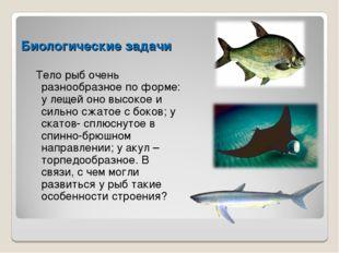 Биологические задачи Тело рыб очень разнообразное по форме: у лещей оно высок
