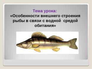 Тема урока: «Особенности внешнего строения рыбы в связи с водной средой обит