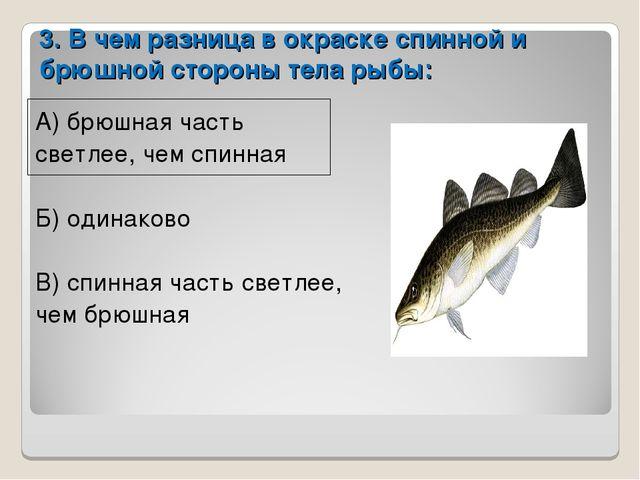 3. В чем разница в окраске спинной и брюшной стороны тела рыбы: А) брюшная ча...