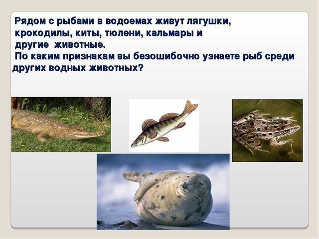 Рядом с рыбами в водоемах живут лягушки, крокодилы, киты, тюлени, кальмары и...