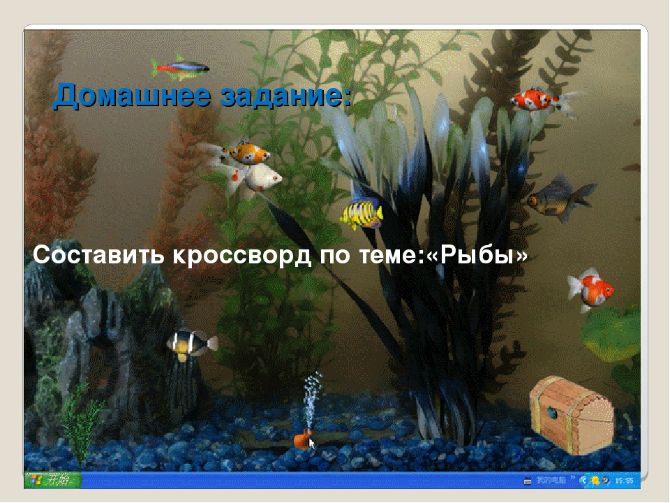 Домашнее задание: Составить кроссворд по теме:«Рыбы»
