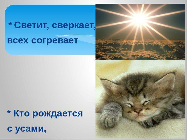 * Светит, сверкает, всех согревает * Кто рождается с усами, но с закрытыми г...