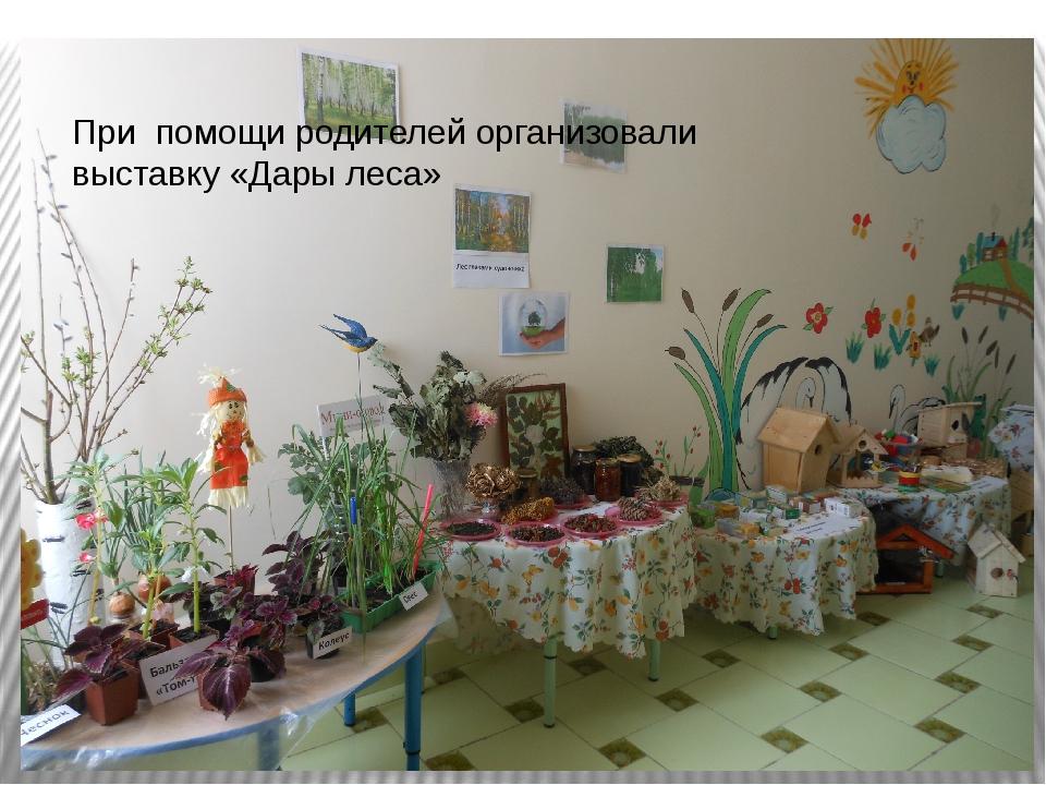 При помощи родителей организовали выставку «Дары леса»