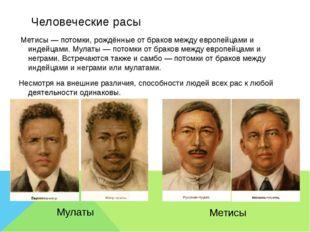 Человеческие расы Метисы — потомки,рождённые от браков между европейцами и и