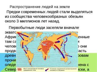 Распространение людей на земле Предки современных людей стали выделяться из с