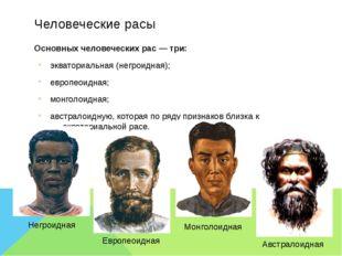 Человеческие расы Основных человеческихрас — три: экваториальная (негроидная