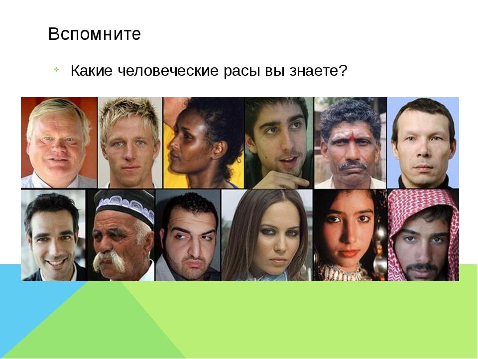 Вспомните Какие человеческие расы вы знаете?