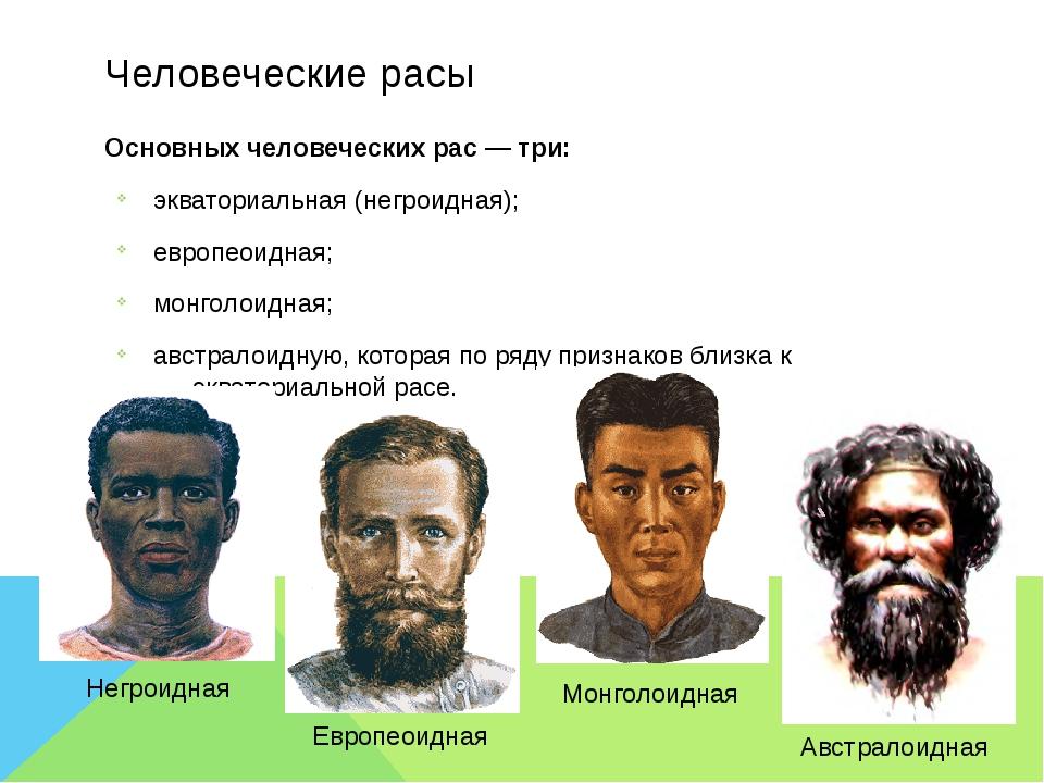 Человеческие расы Основных человеческихрас — три: экваториальная (негроидная...