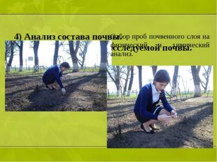 4) Анализ состава почвы. 1.Физический анализ исследуемой почвы.  Отбор проб
