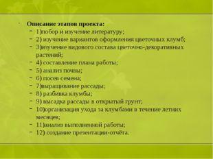 Описание этапов проекта: 1)побор и изучение литературу; 2) изучение вариантов