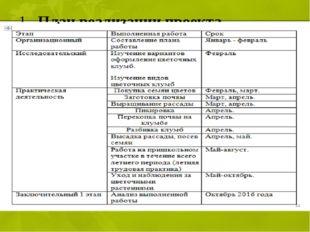 1. План реализации проекта.